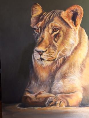 LIONESS - T SABBADIN